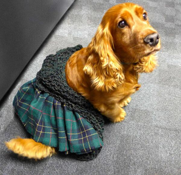 GingerJasper's kilt and wrap
